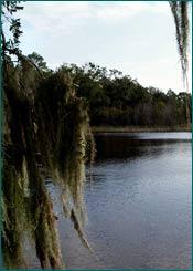 Ponte Vedra Beach Fl Property Appraiser